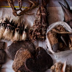 Myanmar's wildlife trafficking hotspot
